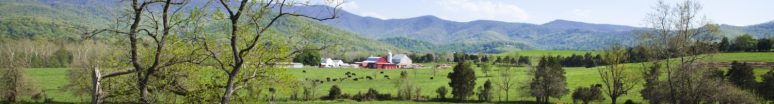 cropped-pasture-photos-com1.jpg