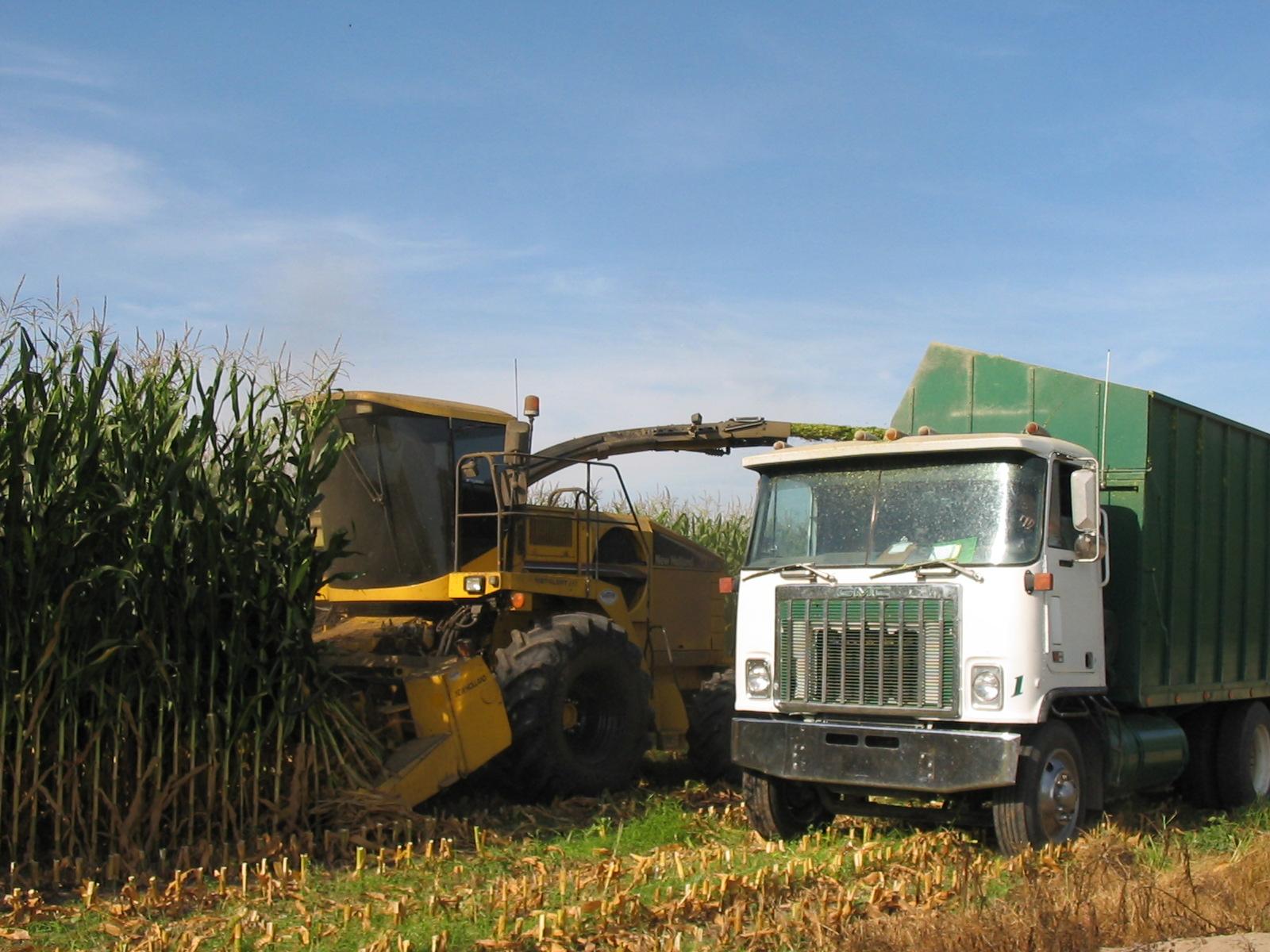 CT Harvest Zylstra 8 04
